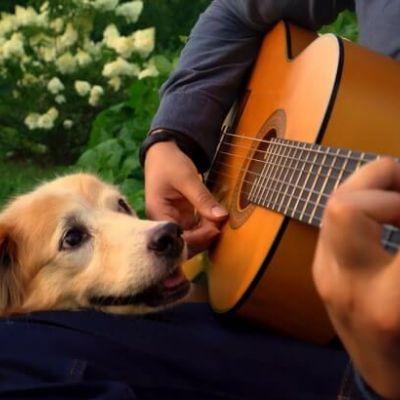 """De arrepiar: dono dá adeus à cachorrinha Maple ao som de """"What A Wonderful World"""""""